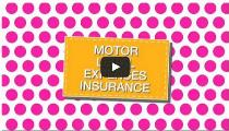Motor legal expenses